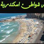 اسعار دخول شواطئ الاسكندرية المميزة والسياحية للفرد وسعر تأجير الكرسي والشماسي