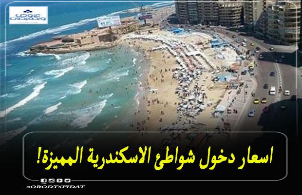 اسعار دخول شواطئ الاسكندرية